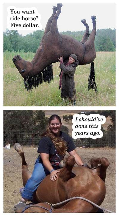 poor fuckin horse